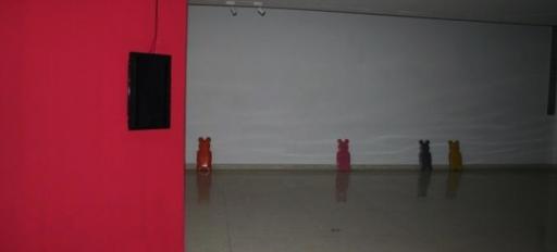 Elsy Zavarce Installation Art